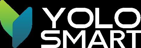 logo-ys